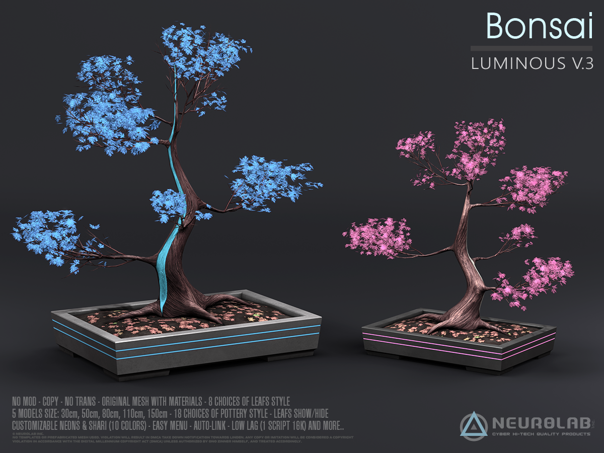 BONSAI Japanese Maple V3 (Collection)